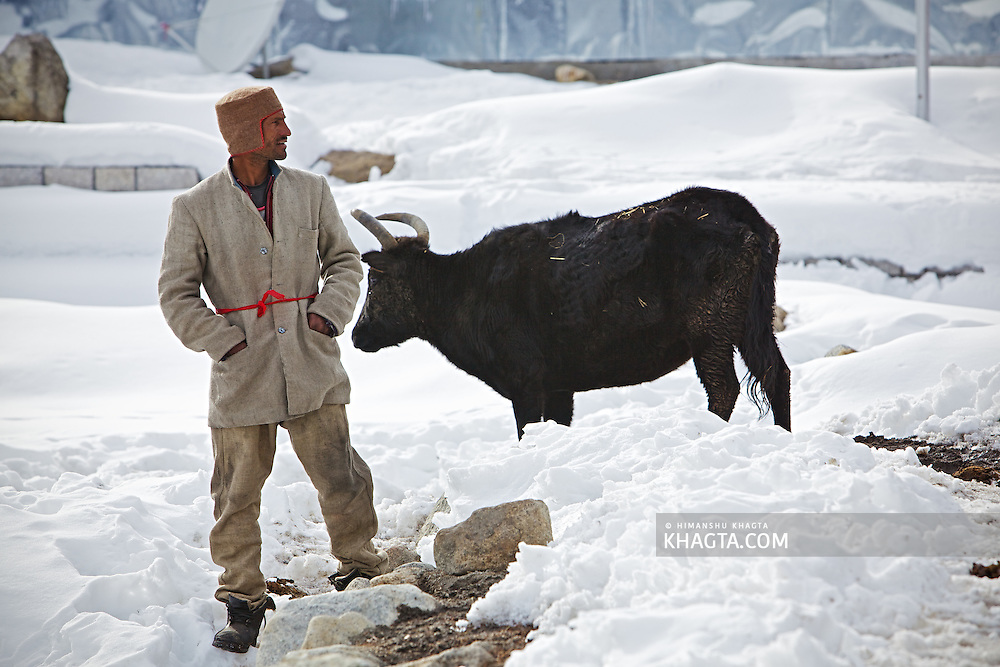 A Kinnauri man, wearing a thick jacket and trousers made of sheep wool and an unfolded Kinnauri Cap and water resistant shoes stands at his village Chitkul between the sheet of snowfall. The village is separated from the outside world in the heavy winter snowfall every year.