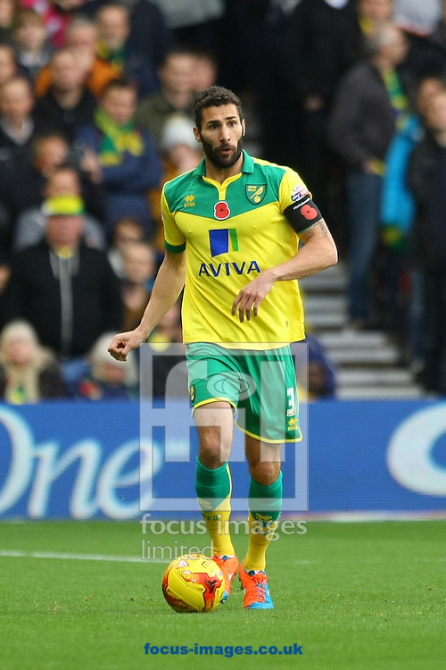 Carlos Cuellar of Norwich in action during the Sky Bet Championship match at the City Ground, Nottingham<br /> Picture by Paul Chesterton/Focus Images Ltd +44 7904 640267<br /> 08/11/2014