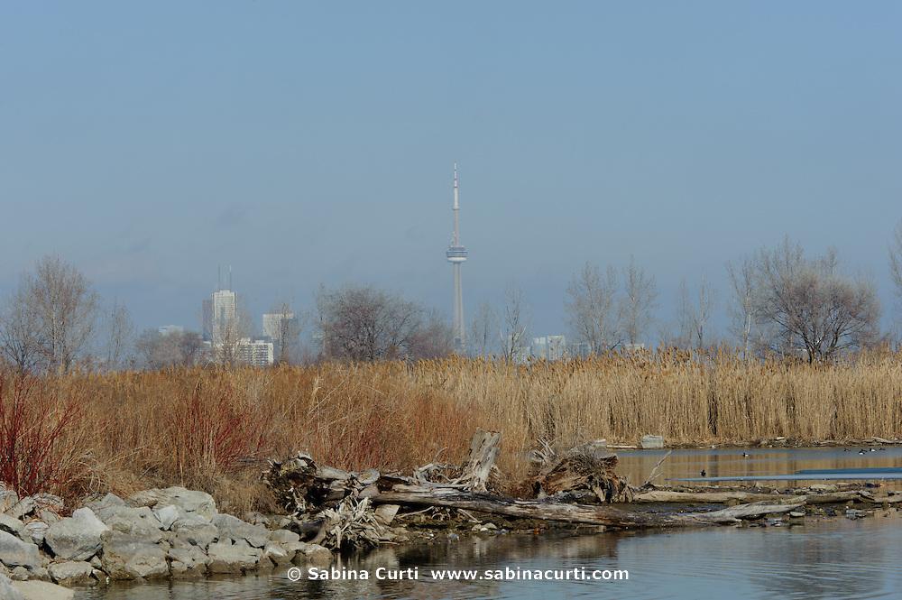 Humber Bay Park, Toronto Ontario