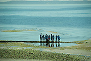 2017 JULY 25 - People enjoy a low tide at Alki Beach near Constellation Park, Seattle, WA, USA. By Richard Walker