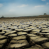 Dry cracked river bed