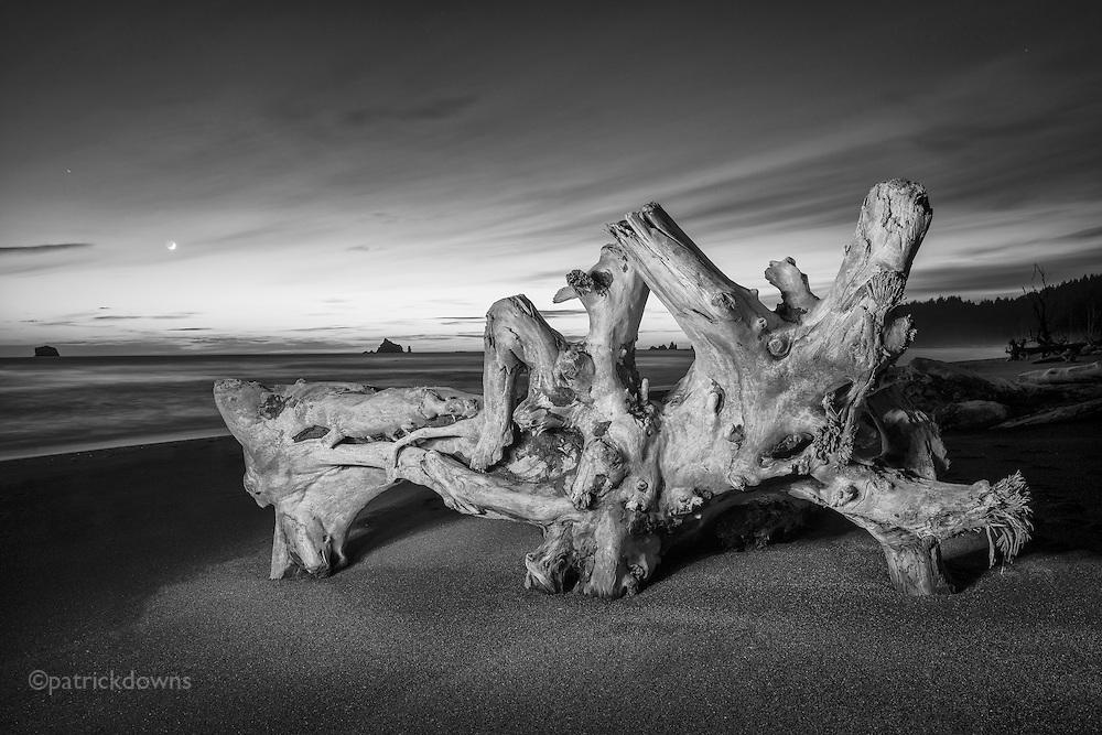 Log and moon, Rialto Beach, Olympic NP, WA