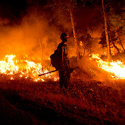 Idaho City Hotshots firefighter Chance Harrington, from Boise pauses with a drip torch while helping light at back burn near Pine, Idaho while fighting the Elk fire. The Elk fire had burned 111,977 acres and was 10% contained as of 8am.  Wednesday August 14, 2013