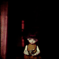 a little girl doll and her camera