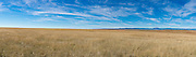 Grasslands in eastern New Mexico.