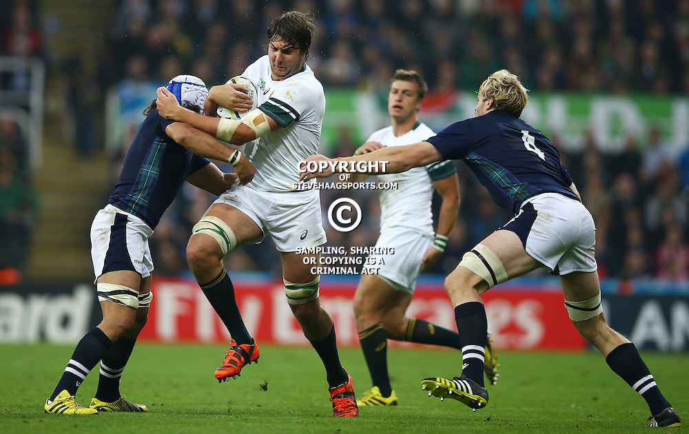 NEWCASTLE UPON TYNE, ENGLAND - OCTOBER 03:Blair Cowan of Scotland tackling Lodewyk de Jager of South Africa during the Rugby World Cup 2015 Pool B match between South Africa and Scotland at St James Park on October 03, 2015 in Newcastle upon Tyne, England. (Photo by Steve Haag/Gallo Images)