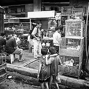 Two boys pass by a pet vendor and a line of men waiting to make purchases from the selection of the  various choices displayed in the cages.