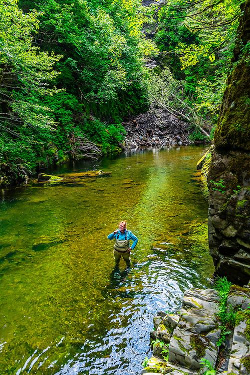 Sawmill Creek, Sitka, Alaska USA.