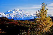 Mt. McKinley in Fall - Alaska