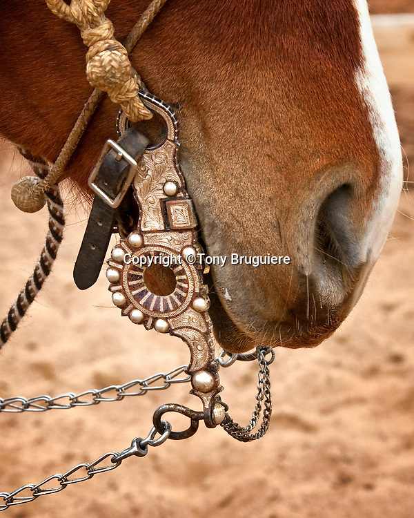 Buckaroo equipment is more ornate than Texas cowboy equipment. This bit has a large amount of inlaid silver.