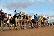 Tuareg men during the III Rencontre International d'Imzad. Tamanrasset, Algeria