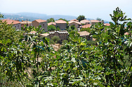 Grece, Peloponese, Magne