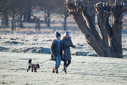 © Licensed to London News Pictures. 16/12/2017. London, UK. A frost covered landscape in Richmond Park. Parts of the UK are experiencing freezing temperatures today with snow expected in parts. London, UK. Photo credit: Ben Cawthra/LNP