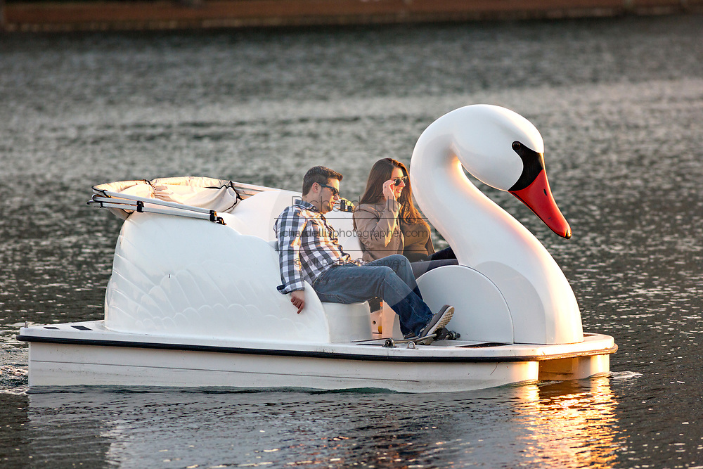 A couple paddle a Swan boat around Lake Eola Park in Orlando, Florida. Lake Eola Park is located in the heart of Downtown Orlando and home to the Walt Disney Amphitheater.