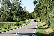 Landstraße, Halbinsel Bodanrück, Bodensee, Baden-Württemberg, Deutschland