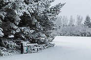Reykjavík & Snow