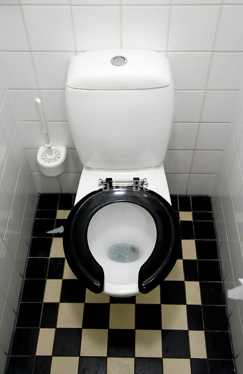 a clean Dutch toilet