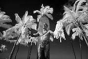 Infrared picture of the Duke Kahanamoku statue in Waikiki.