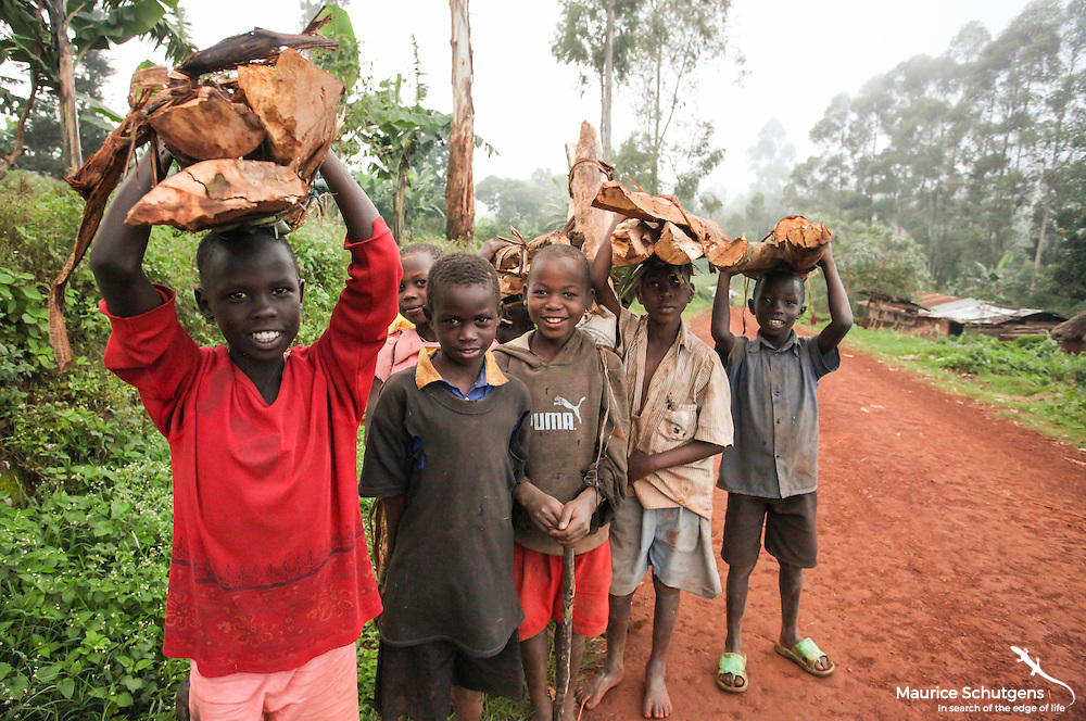 A group of Ugandan kids colelcting firewood illegally from nearby Mt. Elgon National Park. But atleast they have smiles on their faces!