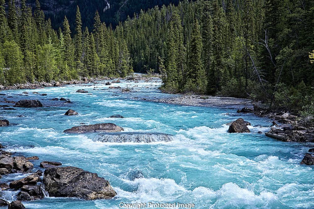 Yoho River/Kicking Horse River confluence., British Columbia, canada,