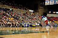 04 May 2006: 'Big G' entertains the fans between the first and second periods of the Harlem Globetrotters vs the New York Nationals at the Sulivan Arena in Anchorage Alaska during their 80th Anniversary World Tour.  This is the first time in 10 years that the Trotters have visited Alaska.