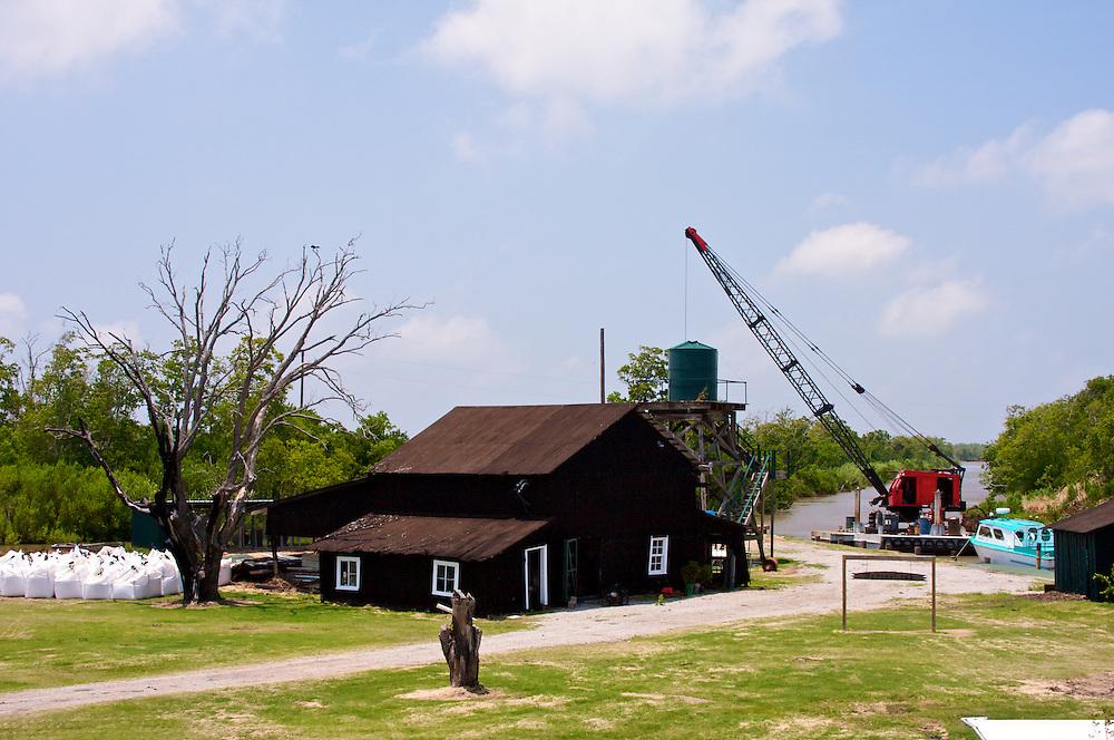 Bayou Hunting Club, near Paul J. Rainey Wildlife Sanctuary, Vermilion Parish, Louisiana, USA