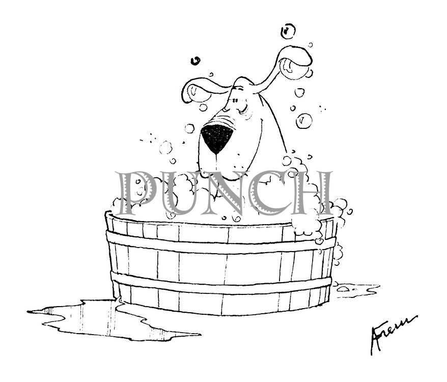(A dog in a very bubbly bath)