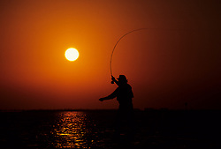 Stock photo of the silhouette of a man casting his rod at sunset