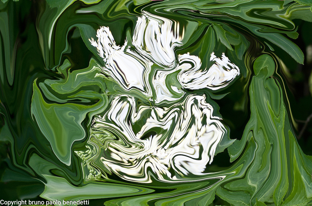 abstract green mood, on fluid green background with many shades of green light white floating shapes.