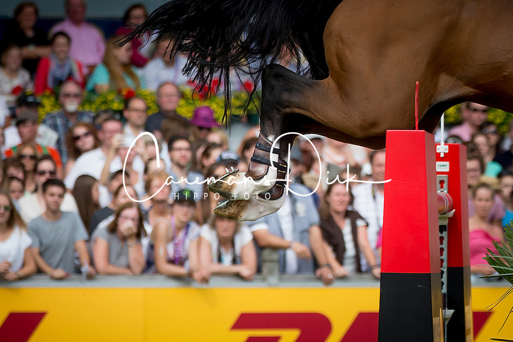 Lynch Denis, (IRL), All Star<br /> Individual Final Competition<br /> FEI European Championships - Aachen 2015<br /> &copy; Hippo Foto - Dirk Caremans<br /> 23/08/15