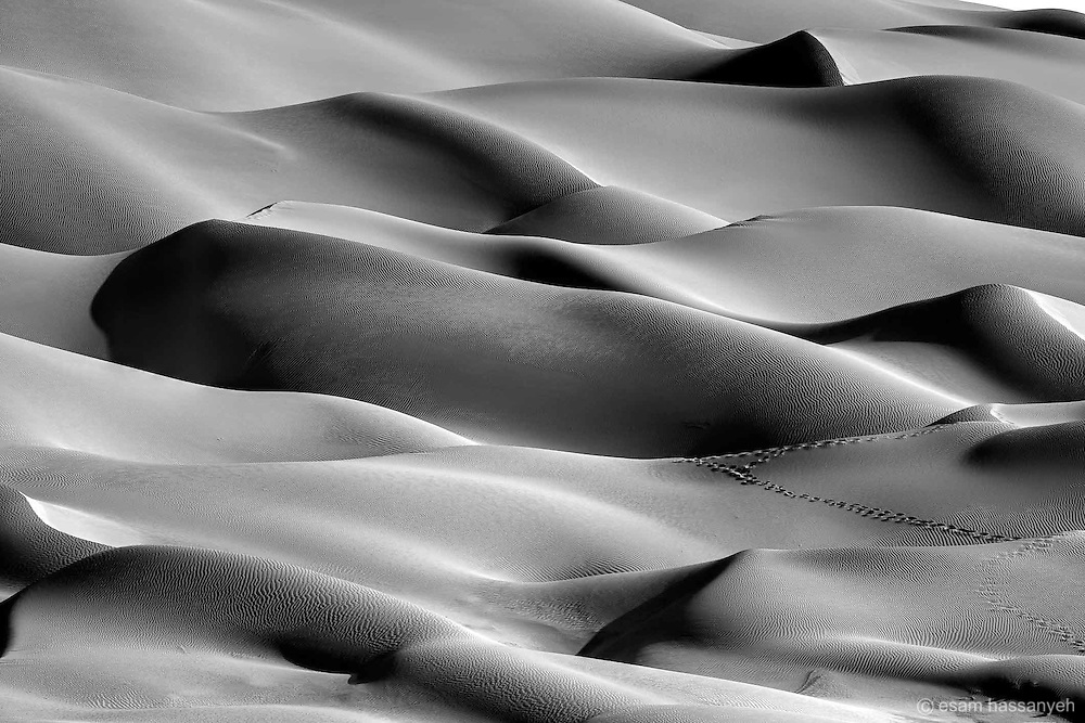 Camel tracks in the stunning dunes of the Liwa Desert, Abu Dhabi.<br />
