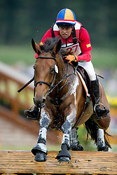 Heffernan Andrew, (NED), Millthyme Corolla<br /> DHL Preis Cross Country<br /> CHIO Aachen 2016<br /> © Hippo Foto - Dirk Caremans<br /> 16/07/16