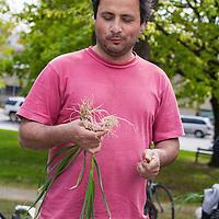 Alvaro Venturelli of Plan B Organic Farm.