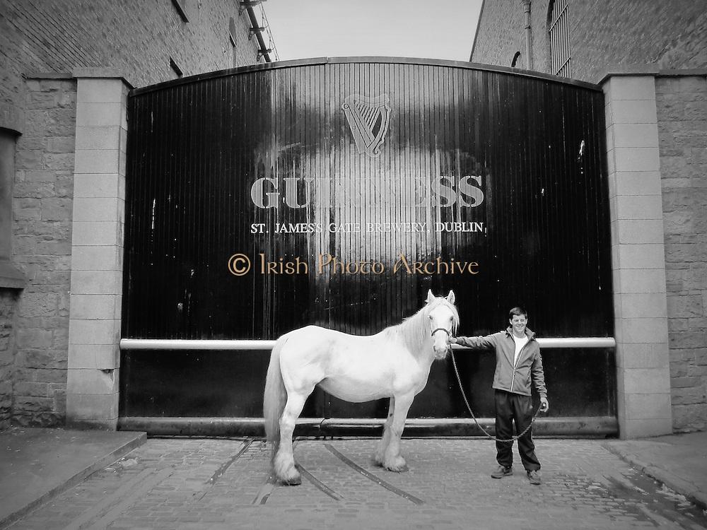 Guinness White Horse Boy, Black Door,