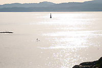 A lone paddleboarder rides into the sunset on the vast Pacific Ocean along the shore of Victoria, BC