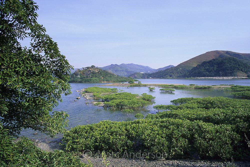 Countryside & wetlands near Starling Inlet, New Territories, Hong Kong, China.
