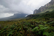 La Gran Sabana, Venezuela, 14-04-2011.Campamento base en el camino hacia el Roraima tepuy en La Gran Sabana.  Localizada al sur de Venezuela en el macizo Guayanés en la parte sureste del Estado Bolívar hasta la frontera con Brasil. En ella conviven diversos grupos indígenas, entre ellos la etnia Pemón. La Gran Sabana forma parte de uno de los Parques Nacionales más extensos de Venezuela, el Parque Nacional Canaima. La Gran Sabana, 14 Abril  de 2011. .(Ramon Lepage / Orinoquiaphoto/ LatinContent/Getty Images)..Trail to Kukenam and Roraima tepui. Tepuis are large mesas that rise out of dense jungle in southeast Venezuela and adjacent Brazil and Guyana. Over 100 of these plateaus rise above the verdant landscape of this region, which is known in Venezuela as the Gran Sabana and also the Guyana Highlands. Tepuis are comprised of Precambrian sandstone, and are some of the oldest exposed rock formations in the world. Monte Roraima is one of the best known of the tepuis and has a labyrinth of rock forms and endemic plants on its summit..