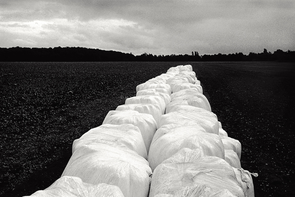 Field with row of haybales covered in plastic
