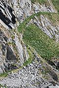 Hiking path at the village of Måstad, Lofoten archipelago, Norway.