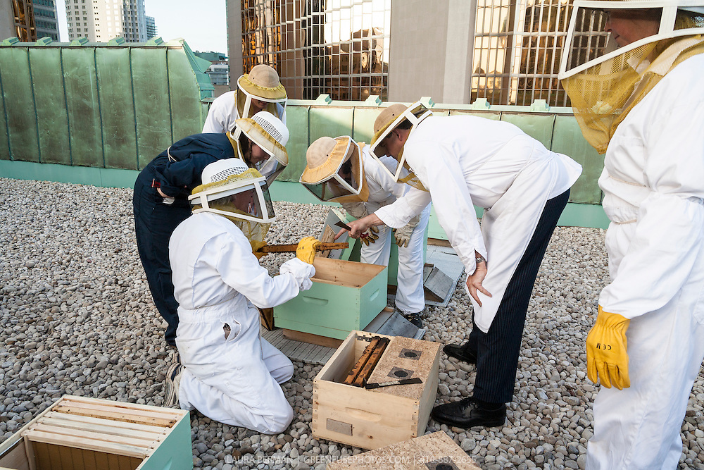 Beekeepers examine the honeybee hive boxes on the rooftop of the Royal York Hotel in Toronto.