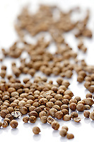 Closeup of died mustard seeds