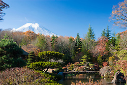 View of Fujisan from Garden, Japan