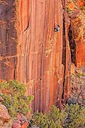 "Pro climber Steph Davis climbing ""Hidden Gem"" (13?) near Moab Utah."