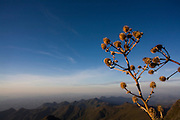 Alto Caparao_MG, Brasil...Pico da Bandeira, no Parque Nacional Serra do Caparao...The Pico da Bandeira at Serra do Caparao National Park ...Foto: LEO DRUMOND / NITRO