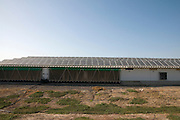 Israel, Jordan Valley, Kibbutz Ashdot Yaacov, Electricity converting solar panels on a roof of a Turkey coop. With the reduction on cost of ownership of these panels, combined with the rise in the cost of electricity have created a positive return on investment on solar electricity. The surplus electricity is sold to the electric company for distribution