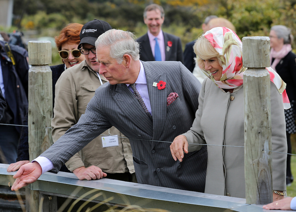 Prince Charles, Prince of Wales and Camilla, Duchess of Cornwall feed native frogs during their visit to the Orokonui Ecosanctuary, Dunedin, New Zealand, Thursday, November 05, 2015. Credit:SNPA / Getty, Rob Jefferies **POOL**