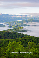 66745-04920 Early morning fog along Foothills Parkway Great Smoky Mountains National Park TN