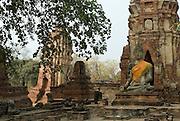 Wat Mahathat, Ayuthaya.