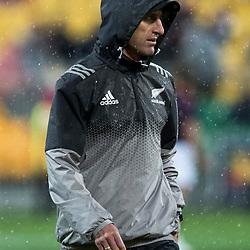 Nic Gill during game 9 of the British and Irish Lions 2017 Tour of New Zealand, the second Test match between  The All Blacks and British and Irish Lions, Westpac Stadium, Wellington, Saturday 1st July 2017<br /> (Photo by Kevin Booth Steve Haag Sports)<br /> <br /> Images for social media must have consent from Steve Haag
