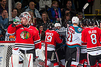 KELOWNA, CANADA - JANUARY 21: Cole Kehler #31 of the Portland Winterhawks stands in net as ice officials sort out roughing penalties against the Kelowna Rockets on January 21, 2017 at Prospera Place in Kelowna, British Columbia, Canada.  (Photo by Marissa Baecker/Getty Images)  *** Local Caption *** Cole Kehler;